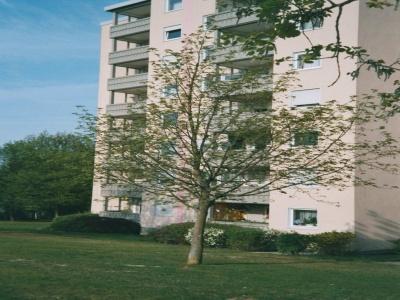 66482 Zweibrücken,3 Zimmer Zimmer,1 BadBäder,Wohnung,Ehrlichstr.3,1066